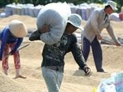 Vietnam promueve inversiones privadas en agricultura