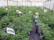 Busca Vietnam estimular inversión en agricultura