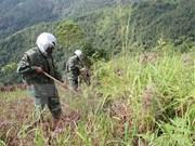 Acomete Ha Tinh desactivación de bombas sin explotar