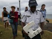 Otros restos de avión hallados en isla francesa La Reunión