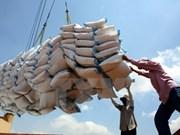 Vietnam exporta tres millones 300 mil toneladas de arroz