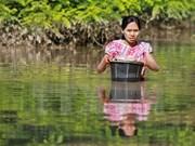 ASEAN brinda asistencia a víctimas de inundaciones en Myanmar