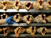 Avicultores enfrentan dificultades por importación de pollos estadoun