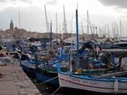 Indonesia y Noruega fomentan lazos en sector acuícola