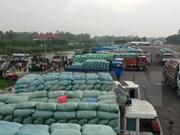 Destacado ascenso de exportación arrocera vietnamita a África