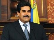 Vietnam y Venezuela robustecen relaciones de cooperación