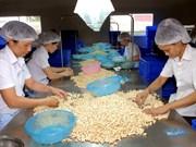Dong Nai logra mayor ganancia por exportación