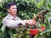 Acelera la región altiplana modernización rural