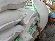 Aumentan exportaciones arroceras de Cambodia