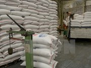 ASEAN y contrapartes aumentarán nexos en agro-silvicultura