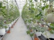 Vietnam y Cuba intercambian experiencias en desarrollo agrícola