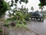 Suman cuatro muertos por continuas lluvias en Nghe An