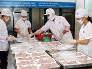 Impactos de Comunidad económica regional para desarrollo de Hanoi