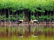 Vietnam se une a esfuerzos internacionales en conservar biodiversidad
