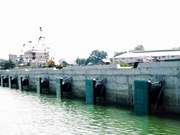 Inauguran en Dong Nai muelle para barcos de gran tonelaje