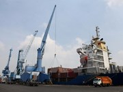 Vietnam - punto brillante del grupo de mercados emergentes