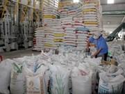 Aumenta Vietnam precio de exportación de arroz
