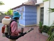 Experimenta Vietnam bacteria contra dengue