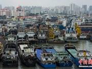 Más de 120 pescadores filipinos desaparecidos por tifón Mujigae