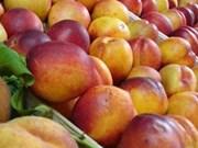 Polonia firma acuerdo para exportar manzana a Vietnam