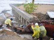 Vietnam: Miles de barcos encuentran cobijo ante tifón Mujigae