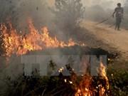 Incendios forestales en Indonesia afectan salud de miles de personas