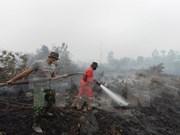 Indonesia acepta oferta de Singapur en enfrentar la neblina