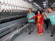 En operación fábrica de fibra textil en Tay Ninh
