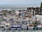 Tres tripulantes vietnamitas desaparecidos en costa de Japón