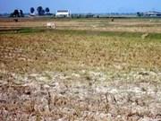 Vietnam integrado a V20 de países vulnerables al cambio climático