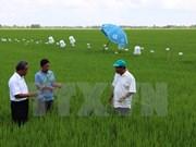 Vietnam comprometido a reducir gases de invernadero en 8%