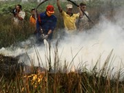 Indonesia sigue en lucha contra incendios forestales y brumas