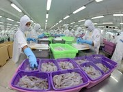 Vietnam y China buscan una mayor cooperación económica