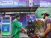 Impulsan propaganda sobre uso de bio-combustible en Vietnam