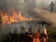 Emisiones por incendios en Indonesia superan a las de EE.UU