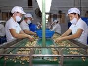 Dispuesto UE apoyar penetración de productos vietnamitas en Europa