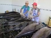 Japón transfiere tecnología de pesca de atún oceánico a Vietnam