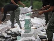 Incumplirá ASEAN objetivo sobre una región sin drogas en 2015