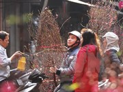 Vietnamitas gozarán de nueve días festivos por el Tet 2016