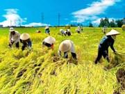 TPP genera oportunidades y retos para empresas del delta de Mekong