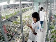 Ciudades vietnamita y estadounidense forjan nexos bilaterales