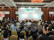 Vietnam llama a mantener paz y estabilidad en mares de Asia Oriental