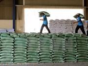 Indonesia:Llegarán próximamente 50 mil toneladas de arroz de Vietnam y Tailandia