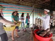 Visitantes extranjeros aprenden a ser agricultores vietnamitas