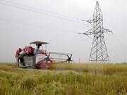 Sector de agricultura busca mayor inversión en tiempo del TPP
