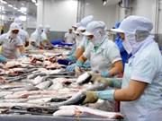 Exportaciones acuícolas reducirán 15 por ciento en 2015