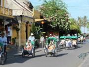 Turistas extranjeros aprenden ser agricultores en Hoi An