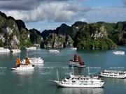 Cruceros en la bahía de Ha Long