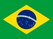 Nexos Vietnam-Brasil: Potencialidades y oportunidades de cooperación