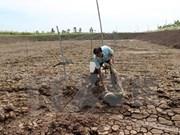 Hung Yen prioriza lucha contra el cambio climático